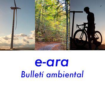 Boletin ambiental