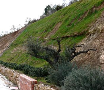 Integració ambiental obres públiques